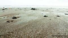 Grain (Stuti ~) Tags: sea india beach sand indian grains arabian mumbai stutisakhalkar thecheesecakeproject