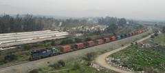 Colorido. (pipussss) Tags: del tren trenes container carro sa pacifico contenedor 2m contenedores locomotora pdc ferrocarril vagon carga fepasa emd 2353 carguero sd39 barranquino d2353 containero
