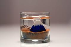 日馬富士 画像5