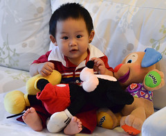 "10-month-old • <a style=""font-size:0.8em;"" href=""http://www.flickr.com/photos/22330476@N02/7624703502/"" target=""_blank"">View on Flickr</a>"