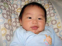 "2-month-old-4 • <a style=""font-size:0.8em;"" href=""http://www.flickr.com/photos/22330476@N02/7625124820/"" target=""_blank"">View on Flickr</a>"