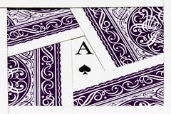 2016-07-17-002-MaMa - MGFK - Cards - 0004 - C00001sr - W1920 (mair_matthias_1969) Tags: augsburg bayern deutschland de lumix panasonic dmcg7 dmcg70 mft microfourthirds g7 g70 lumixg7 lumixg70 nophotoshop keineschmutzigentricks ohneschmutzigetricks nodirtytricks gvario14140f3556 makro zwischenringe macro extensionrings mgfk indoor macromondays cards