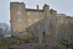 DSC_0164 (FyP-55) Tags: chateau castle medieval berzélechâtel france
