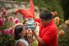 Kisses for the toddler (tibchris) Tags: family love kisses indian upsidedown flowers child girl adoration hugs snapchris portrait