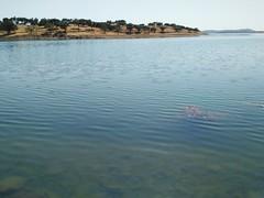 O banho (LuPan59) Tags: lupan59 ferias 2016 vero passeios friasdevero2016 passeiosdemota mouro