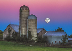 (CareyCloss) Tags: barns bucolic building oldbuilding oldfences canada calm d800 dusk evening eveningshade colorful country countryside field fence goldenhour grass landscape lunar fullmoon moon moonrise nature nikon nightfall outdoors ontario lanark lanarkcounty lanarkhighlands pastoral rural farm sky sunset sunrise sundown twilight gloaming vegetation silo trees ruralcanada ruralontario