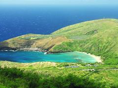 inside the cone (nj dodge) Tags: hanaumabay snorkelcentral forsome tuffcone crater coral hike hawaiikai honolulu oahu hawaii kokohead kokoheadtrail