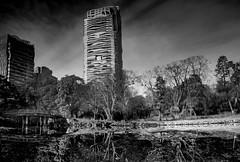 Modern reflection ( monkeys with cameras (AKA Marx)) Tags: hamarikyu japan tokyo garden lake bridge skyscraper building inverted reflection