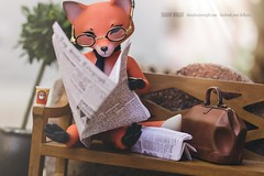 Khitrula Fox by Whispering Grass (Sharon Wright Photography) Tags: khitrula fox bjd jpopdolls animal anthro ball jointed doll whispering grass mr reading newspaper park bench smart drink coffee relax sharon wright dollphotography dollblogger dollcollecting photographer dollpics