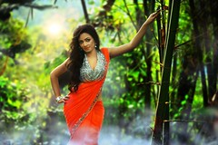 South Actress Madhuchandaphotos Set-3-Hot In Traditional Dress (26)