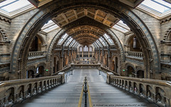 London Natural History Museum (DSC07767) (Michael.Lee.Pics.NYC) Tags: london england unitedkingdom naturalhistorymuseum architecture stairs arches fisheye wideangle sony a7rm2 rokinon12mmf28