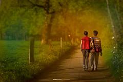 Dating with Dad (anitachristine) Tags: badzwischenahn oldenburg germany deutschland walking travelling anitachristine sunset lighting