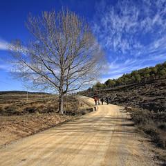8296_F (Cañete, Conca) (Rafelot) Tags: road tree canon arbol spain europe cuenca cañete cabriel 1000d eixidetes rafelot amicsdelacamera afsueca afcastello