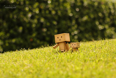 Happy Earth Day (.•۫◦۪°•OhSoBoHo•۫◦۪°•) Tags: green grass canon 50mm dof bokeh earth creative environment earthday odc danbo growingwild canoneos40d danboard danbolove sliderssunday danbophotography april222012 danboearthday