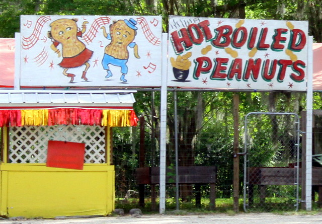 Hot Boiled Peanuts - Cottondale, FL
