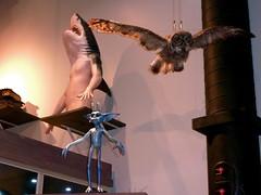 P1180645 (danger_skies) Tags: uk london studio shark harry pixie owl studios making the tour viktorkrum leavesden brothers harry studio potter warner bros wb