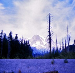 Washington   -   Mt. Rainier from Kautz Flood Exhibit  -  September 1970