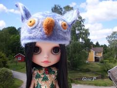 Owl Helmet for Blythe