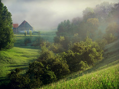 MorningFogOverTheFarm (BphotoR) Tags: trees mist fog rural forest germany deutschland spring haze mood nebel hessen farm may wiese powershot mai land wald bume hang bauernhof hof frhling hesse odenwald naturesfinest frhnebel bergstrasse sdhessen supershot g10 abigfave anawesomeshot bphotor