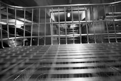 REfoto_Darkroom_06 (lostinthesupermarket2012) Tags: darkroom blackwhite ilford biancoenero refoto reggioemilia cameraoscura lostinthesupermarket