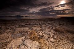 All Cracked Up_DSC8406 (antelope reflection) Tags: sunset storm water clouds utah mud antelopeisland greatsaltlake cracks utahstatepark nikond90