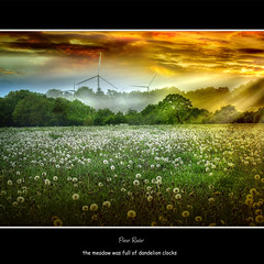 the meadow was full of dandelion clocks ... (Peter Roder) Tags: sky sun mist tree clouds meadow wiese himmel sunrays windrad sonne sonnenstrahlen windturbine pusteblume blowball mygearandme mygearandmepremium mygearandmebronze mygearandmesilver mygearandmegold mygearandmeplatinum galleryoffantasticshots