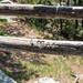 Minnewaska State Park - Wawarsing, NY - 2012, May - 17.jpg by sebastien.barre