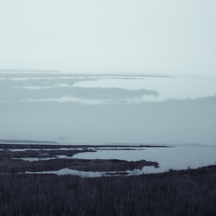 Mud Bay Exposed (tvc415) Tags: sky seascape abstract water multipleexposure grasses splittoned