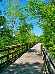 """Rails to trails"" (jamesfburns) Tags: old railroad bridge blue summer sky nature beautiful beauty bike hiking trails bluesky hike biking rails railstotrails reclaimed reclaim summerday railroadtrack bikingandhiking me2youphotographylevel1"