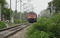 ED WAP-4 rises from ground ! (karthik abbilash) Tags: camera india electric digital train ed track tn diesel sony traction rail loco gradient locomotive express passenger incredible sr tamilnadu bharat ballast erode southernrailway indianrailways irfca 15905 15906 22281 incredibleindia wap4 hx1 bharatiyarail