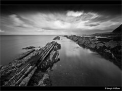 Cove Mono (Dougie Williams) Tags: longexposure blackandwhite black beach scotland seascapes cove horizon lee stacking stopper eastlothian longexposures torness bythesea digitalcameraclub dunglass blackwhitephotos thorntonloch bigstopper nd10stop leebigstopper musselburghcameraclub