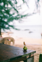 (mr_i) Tags: sky cloud sun seascape tree green beach nature landscape island 50mm leaf nikon bokeh superia clear jungle harmony malaysia fujifilm lonely nikkor folks fm2 f12
