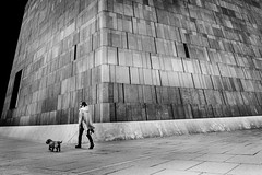 ...followme... (ines_maria) Tags: vienna austria art museumofmodernart bw monochrome dog urban city blackandwhite