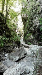 Percorso tra le rocce #vertova #valvertova #percorso #trekking #rocce #fiume (elena.zibetti91) Tags: vertova fiume rocce percorso valvertova trekking