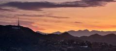 Ah, Hollywood! (Rebecca Ang) Tags: hollywood ca california losangeles la hollywoodsign sunrise dawn color colors hollywoodhills morning rebeccaang