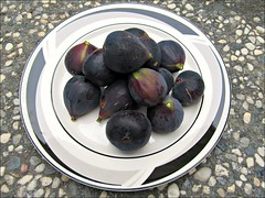 Mission fig harvest (Needleloca) Tags: 2016 figs trees garden fruit ribbet