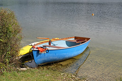 Waiting boats (rotraud_71) Tags: austria salzburgerland wallersee henndorf water boats summer