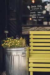 Yellow (ninasclicks) Tags: flowers yellow tin street bench newyork