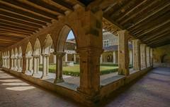 2016-08-05 (05) Abbaye de Flaran.Clotre (XIVe sicle) (steynard) Tags: gers midipyrnes occitanie france