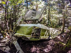 old plane crash slowly dissolves in the forest (AgFineArtPhotography.com) Tags: island crash yap plane forest adventure tropics tropical green travel diving trees old tour rainforest colors airplane planecrash jungle nc 1978 callowaypeak hike blueridge mountains aluminum northcarolina woods disaster death fatality grandfather