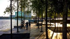 20160812_194656 (durr-architect) Tags: almere waterfront kunstlinie sanaa modern architecture evening light