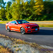 Panning A 2016 Ford Mustang GT California Special
