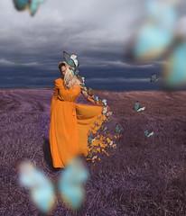 Away (veldreannija) Tags: butterflies blue fineartphotography fineart field yellow purple art annija artist annijaveldre autumn
