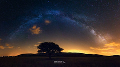 Over the tree (Jrmie Toussaint Photography) Tags: france lavacquerieetsaintmartindecastries languedocroussillonmidipyrnes fr landscape nightscape night stars milkyway arch tree field outdoors nature panorama dark sky galaxy