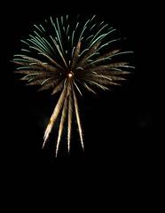 _MG_1216 (sdferrell) Tags: dmt fireworks ny