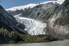 Bear Glacier (Steven Olmstead) Tags: glacier ice mountains lake forest snow bc canada
