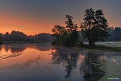 Mühlenteich - 13091602 (Klaus Kehrls) Tags: sonnenaufgang morgenrot wohldorf landschaft natur morgenstimmung nebel flüsse seen teiche gewässer spiegelung hamburg deutschland germany
