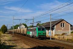 13-09-16 BB 26184 & Me140 N 50041 Rungis Montauban (vincent037) Tags: train messagerie rapide me140 frigo 50041 rungis montauban sybic fret eguzon 26184 sncf bussereau
