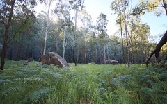 Lot 129 Kangaroo Creek Road, Kangaroo Creek NSW