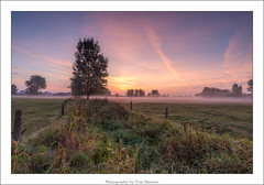 sunrise. (Tom Baetens) Tags: 1835mm tombaetens belgium clouds d610 filters landscape lee light mist misty morning nikon outdoor sky sunlight sunrise tree view